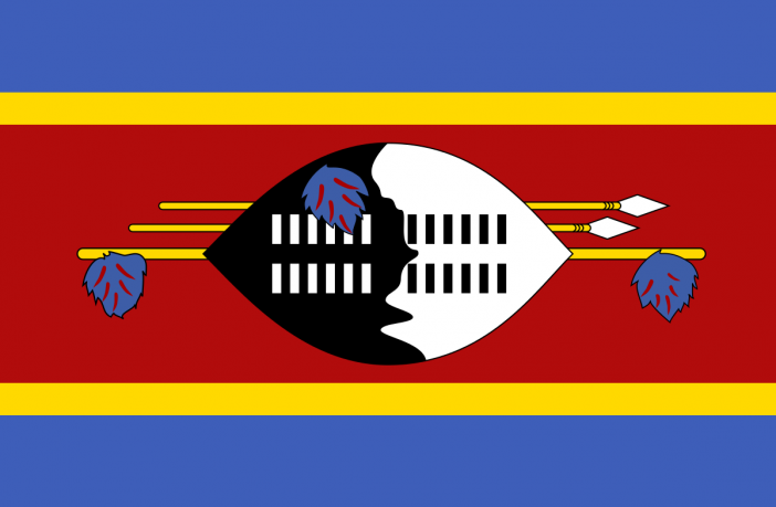eSwatini (Swaziland) Electricity Company Issues RFQ for 10mw Solar PV Farm