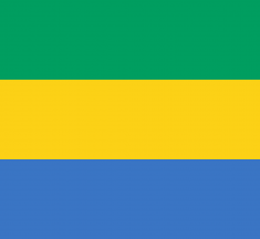 Wärtsilä Inks 15 Year Deal for Construction and Maintenance of 120MW Gas-To-Power Plant in Gabon