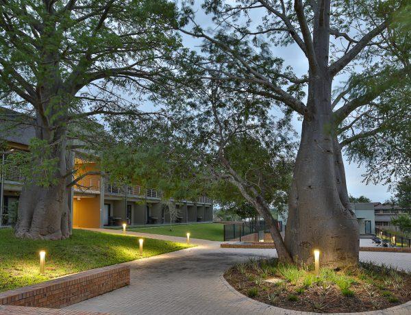 BEKA Schréder Supplies Exterior LED Lighting for Skukuza Safari Lodge