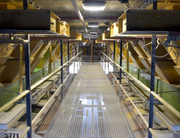 BEKA Schréder Supplies LED Lighting Retrofit Solution for Meadow Feeds Factory